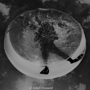 The photographer's (my own) reflection in an air bubble r... by Sean Howard