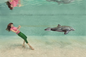 Dolphins are not Pets! by Lucie Drlikova