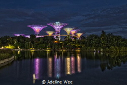 Tranquility & reflections by Adeline Wee
