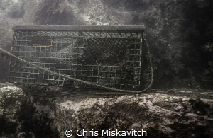 Typical sight of the coast of New England.....Lobster pot... by Chris Miskavitch