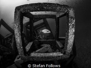 Framed ... Sail Rock, Thailand-EM5-Panasonic 8mm-iso200-f... by Stefan Follows