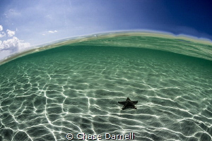 A super clear day at Starfish Point. by Chase Darnell