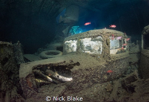 Thistlegorm Truck, Red Sea, Egypt. by Nick Blake