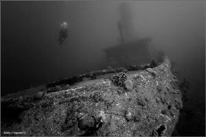 Caribbean Sea. Cuba. Alta Vista wreck. 30 meters deep. by Dmitry Vinogradov