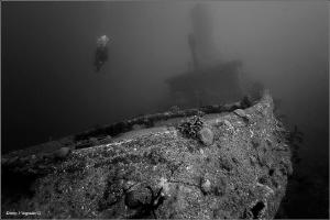 Caribbean Sea. Cuba. Alta Vista wreck. 30 meters deep. by Dmitry Vinogradov