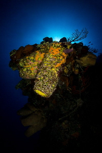 """Glow""