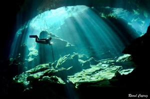 Diving in the sun rays by Raoul Caprez