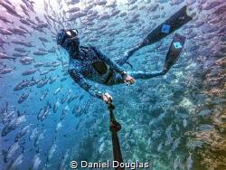 Monday blues @ Sipadan Island, Malaysia by Daniel Douglas