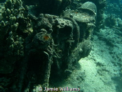 Motorcycle at Harley Reef by Jamie Williams