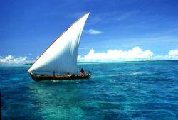 FELLUCA! Cruising toward a balmy off Bandos Island, this ... by Rick Tegeler