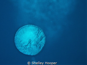 A diver trapped in a bubble..