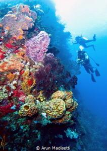 Generic reef scenic post tropical Storm Erica by Arun Madisetti