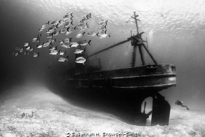 USSKittiwake one my favorite dives. Every time descend variety light sealife conditions... inspire photo USS-Kittiwake USS Kittiwake dives conditions