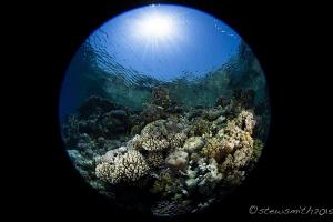 Jackson Reef by Stew Smith