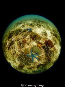 Earth~ by Kiyoung Jang