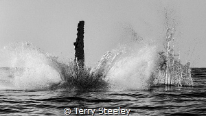 The spirit of Excalibur by Terry Steeley