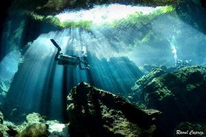 Diving in the light by Raoul Caprez