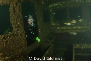 Diver enters the sunken remains of a tour boat in the Wel... by David Gilchrist
