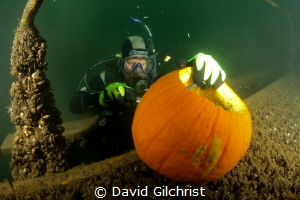 Diver concentrates on carving a pumpkin at the Welland Sc... by David Gilchrist