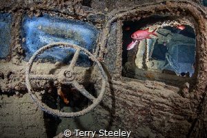 Cars and fishes. In the belly of the SS Thistlegorm. — S... by Terry Steeley