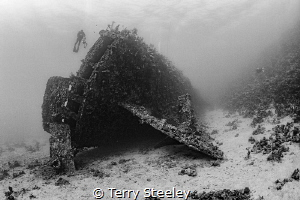 Sunk in bad weather in 1869, the Carnatic is the oldest d... by Terry Steeley