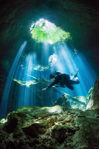 Diver in the Light - Mexico by Spencer Burrows