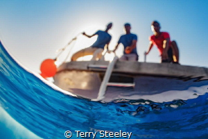The world a fish sees... — Subal underwater housing, Zen... by Terry Steeley