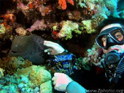 Paul with an undulating eel =) He was smiling big time be... by Zaid Fadul