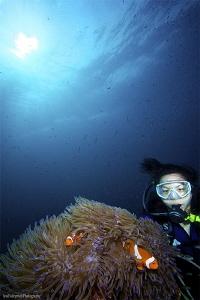 Seow & Anemonefish by Iyad Suleyman