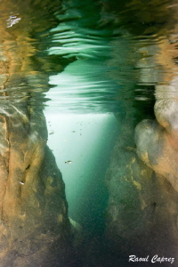 Brazilien river by Raoul Caprez