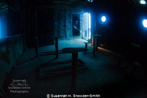 This photo is best viewed enlarged to see detail: a diver... by Susannah H. Snowden-Smith