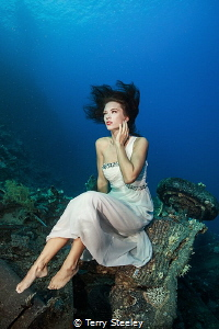 'Lost at Sea.' — Subal underwater housing, Canon 1Dx, Ca... by Terry Steeley