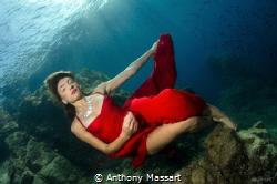 Red dress by Anthony Massart