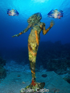 'Mermaid Mess' by Jim Catlin