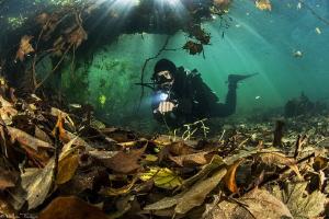 autumn freshwater diver (selfie with remote control), Lez... by Mathieu Foulquié
