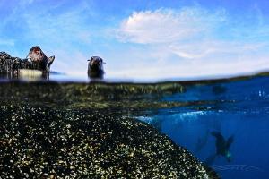 ~ Their Two Worlds ~ by Geo Cloete