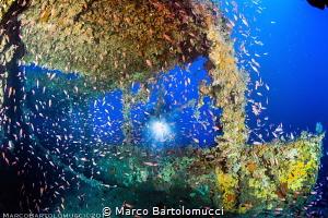 Henry Desprez Wreck by Marco Bartolomucci