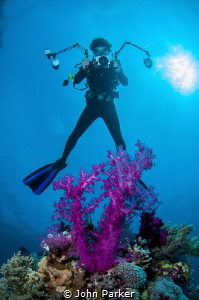 Soft Coral and Photographer by John Parker