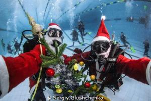 Merry Christmas & Happy New Year! by Sergiy Glushchenko