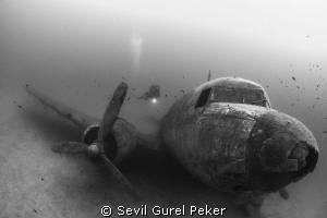 Plane wreck, Depth 20 meters, No strobe, by Sevil Gurel Peker