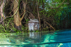 Mayan River, Jade River Mexico by Alejandro Topete