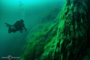 The art of diving by Marcin Michalak