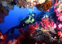 FRAMED! The White Wall at Taveuni, Fiji. Housed Nikon F; ... by Rick Tegeler