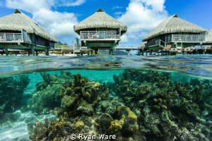 Just a little swim after a relaxing day in Moorea by Ryan Ware