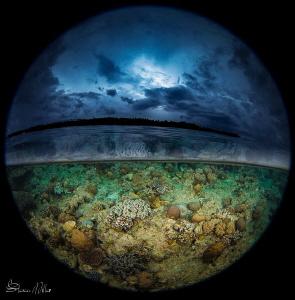 long list- cold shot by Steven Miller