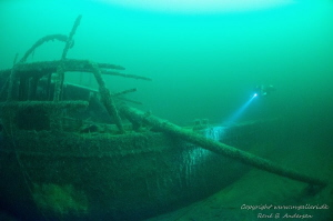 Lilly wreck by Rene B. Andersen