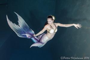 The mermaid by Petteri Viljakainen