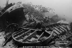 Oro Verde shipwreck