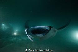 Manta Ray from darkness.  by Daisuke Kurashima