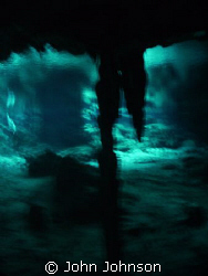 this is in the cenotes in mexico , the photo was taken wi... by John Johnson